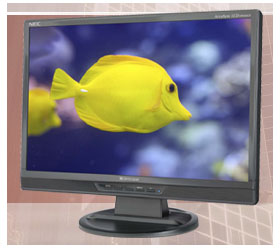 Monitor NEC LCD19WMGX