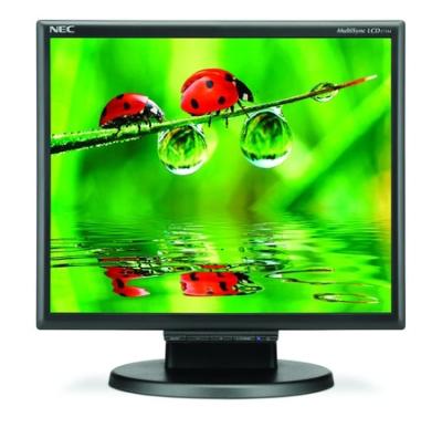 NEC MultiSync LCD175M