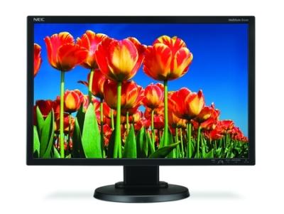 Monitor LCD NEC MultiSync E222W