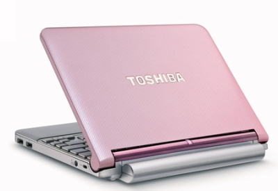 Netbook Toshiba NB205